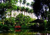 Fantasma Boat leva você para conhecer o Jardim Botânico