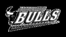 Canterbury Bulls.png