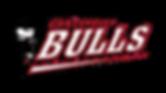 bulls png.png