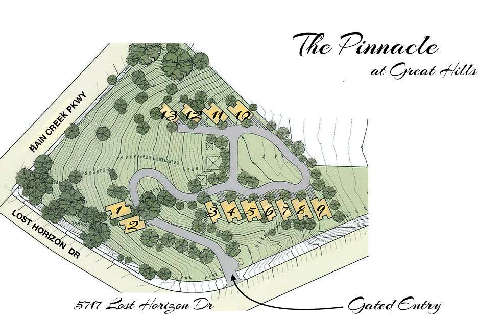 pinn web site plan.jpg