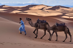 Morning Roundup, Sahara Desert