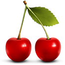 6-2-cherry-png-clipart.png