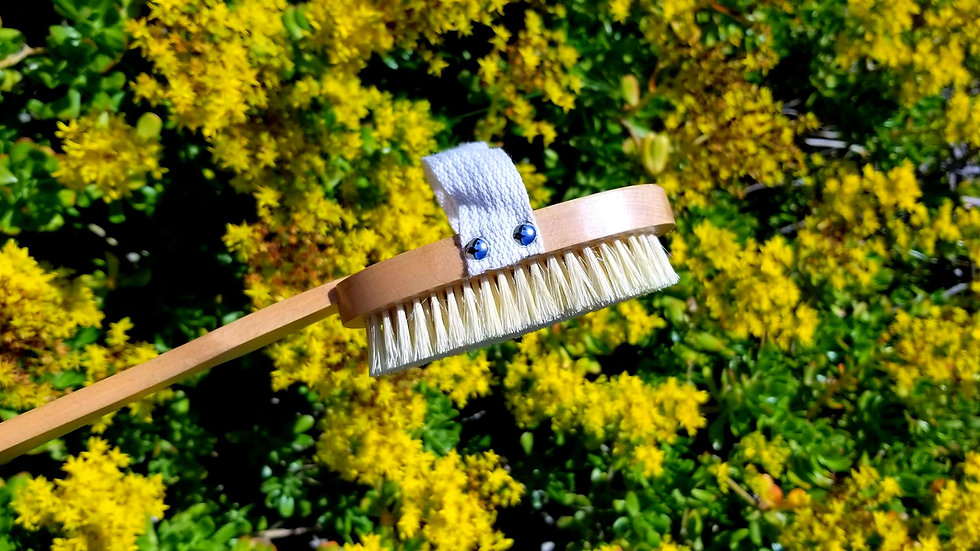 Vegan Sisal Body Brush With Removable Handle