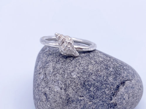 Moon Snail shell ring (stackable)