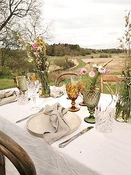 udendørs bryllup eller havefest i haven