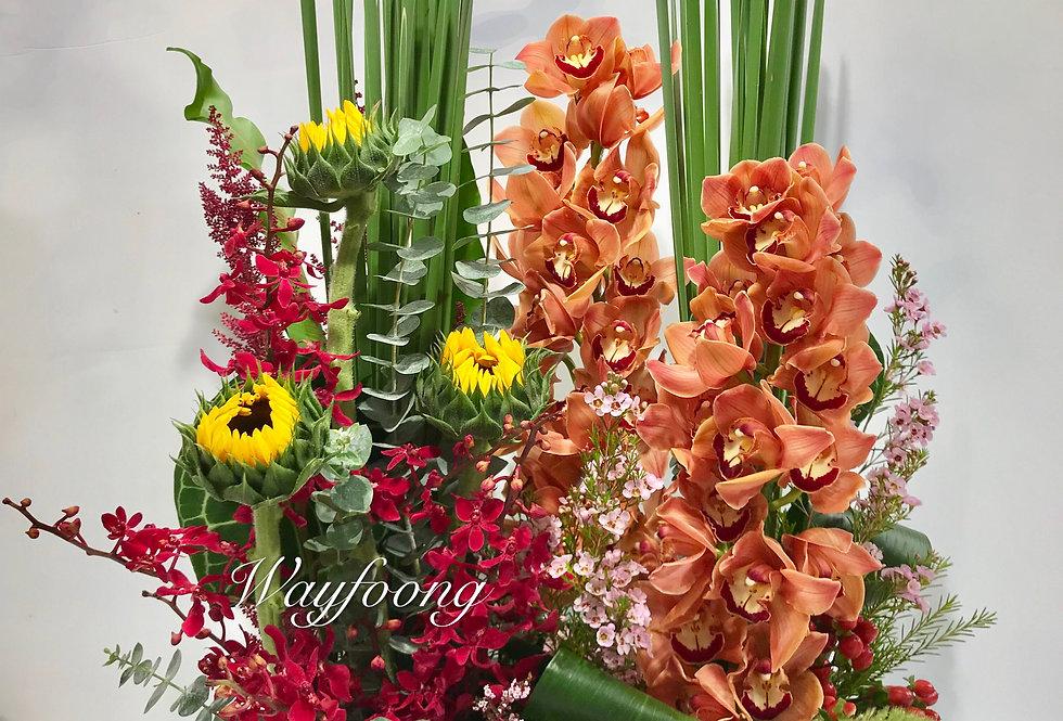 蕙蘭向日葵枱花
