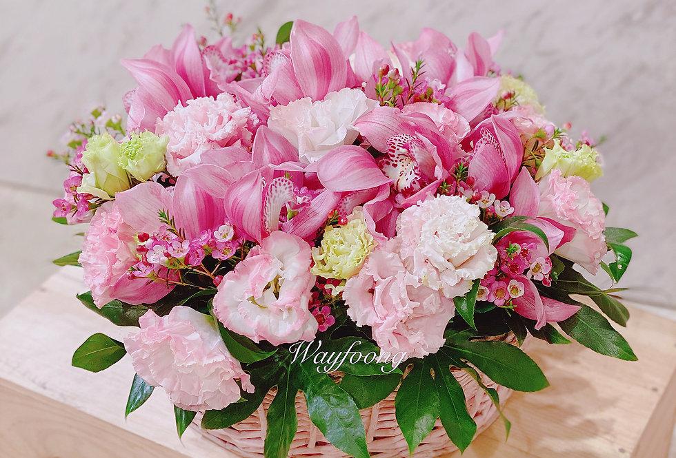 蕙蘭桔梗枱花