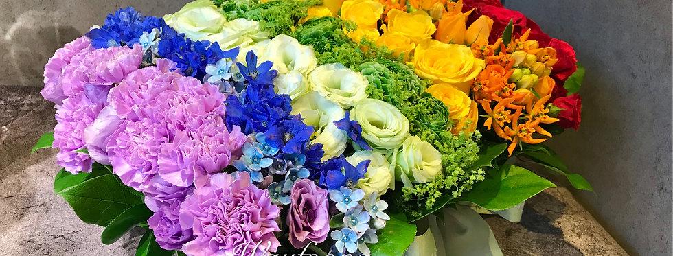 Rainbow彩虹枱花