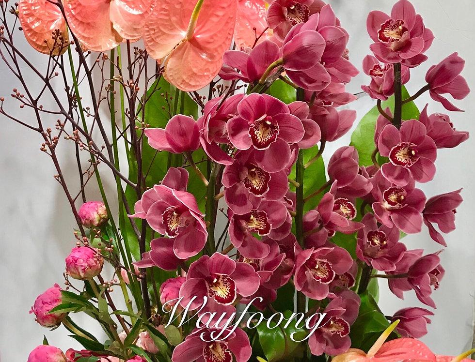 紅掌蕙蘭枱花