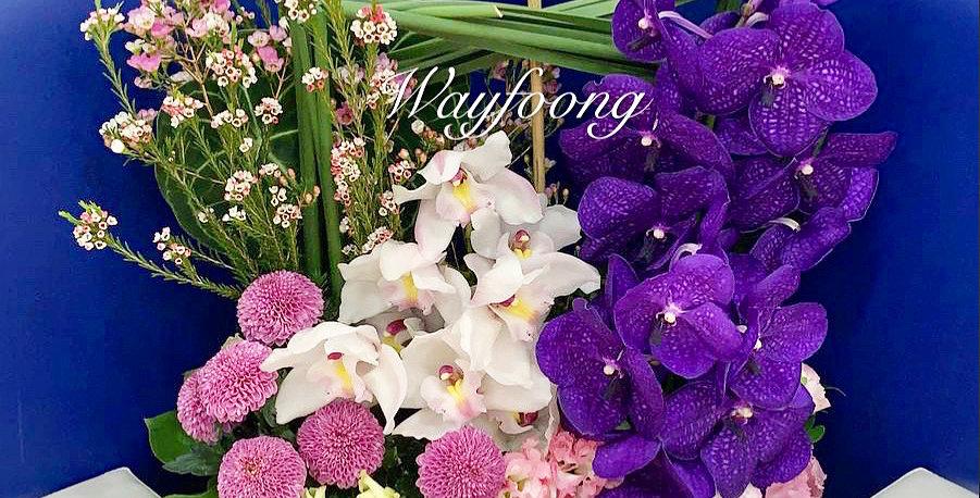 蕙蘭萬代蘭枱花