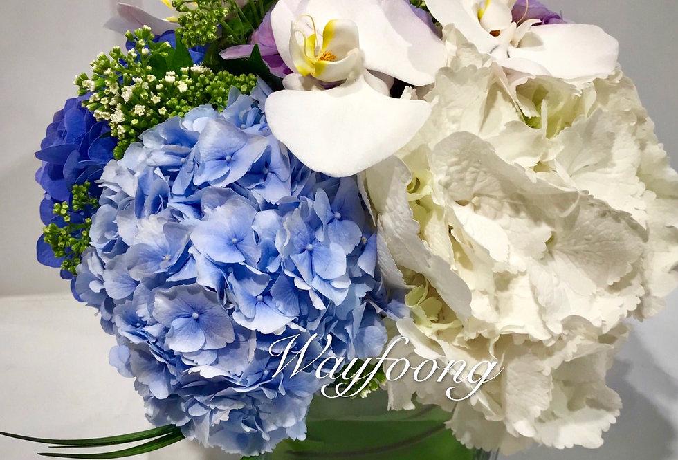 繡球蝴蝶蘭枱花