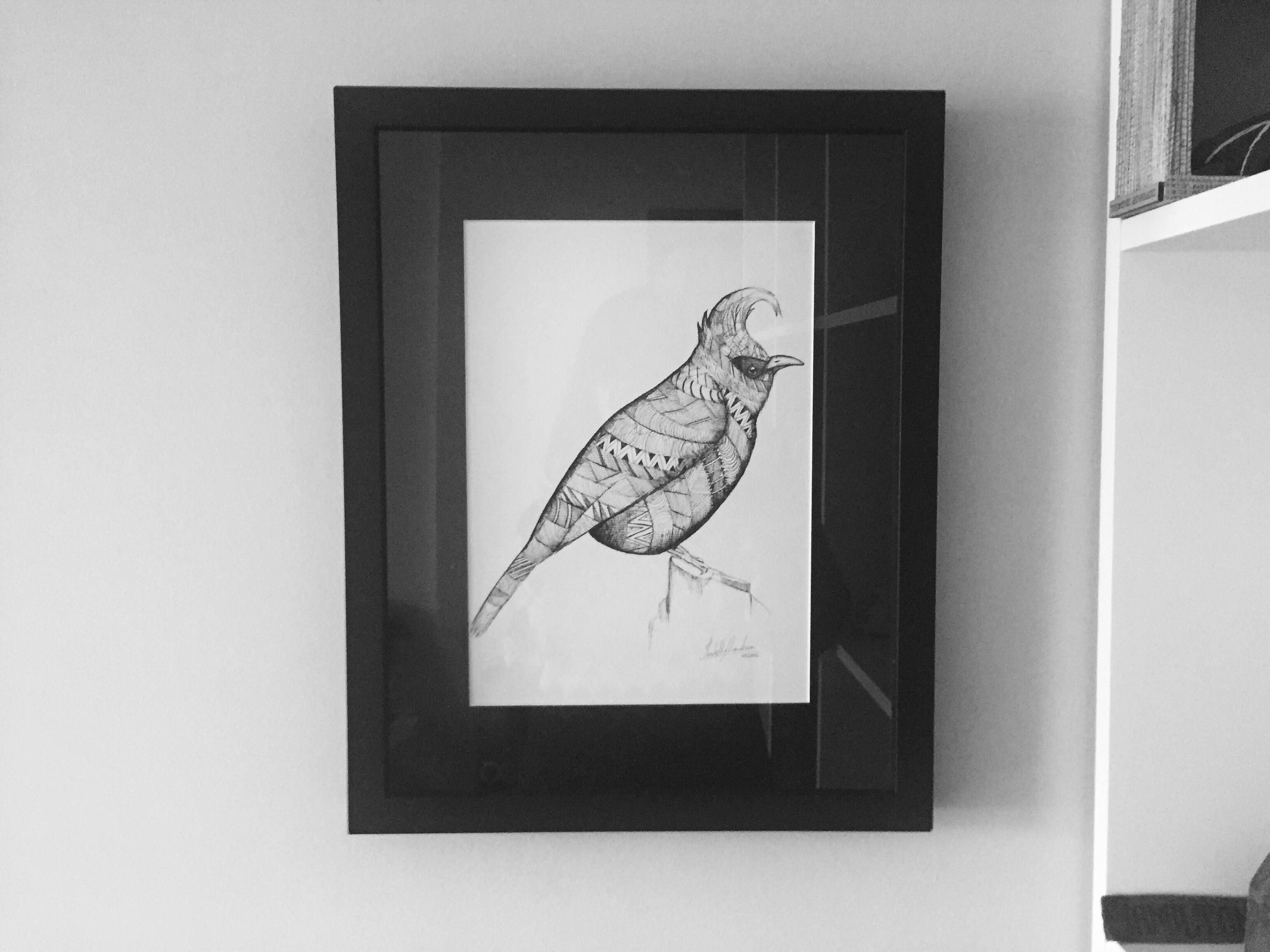 Pássaro1-A4
