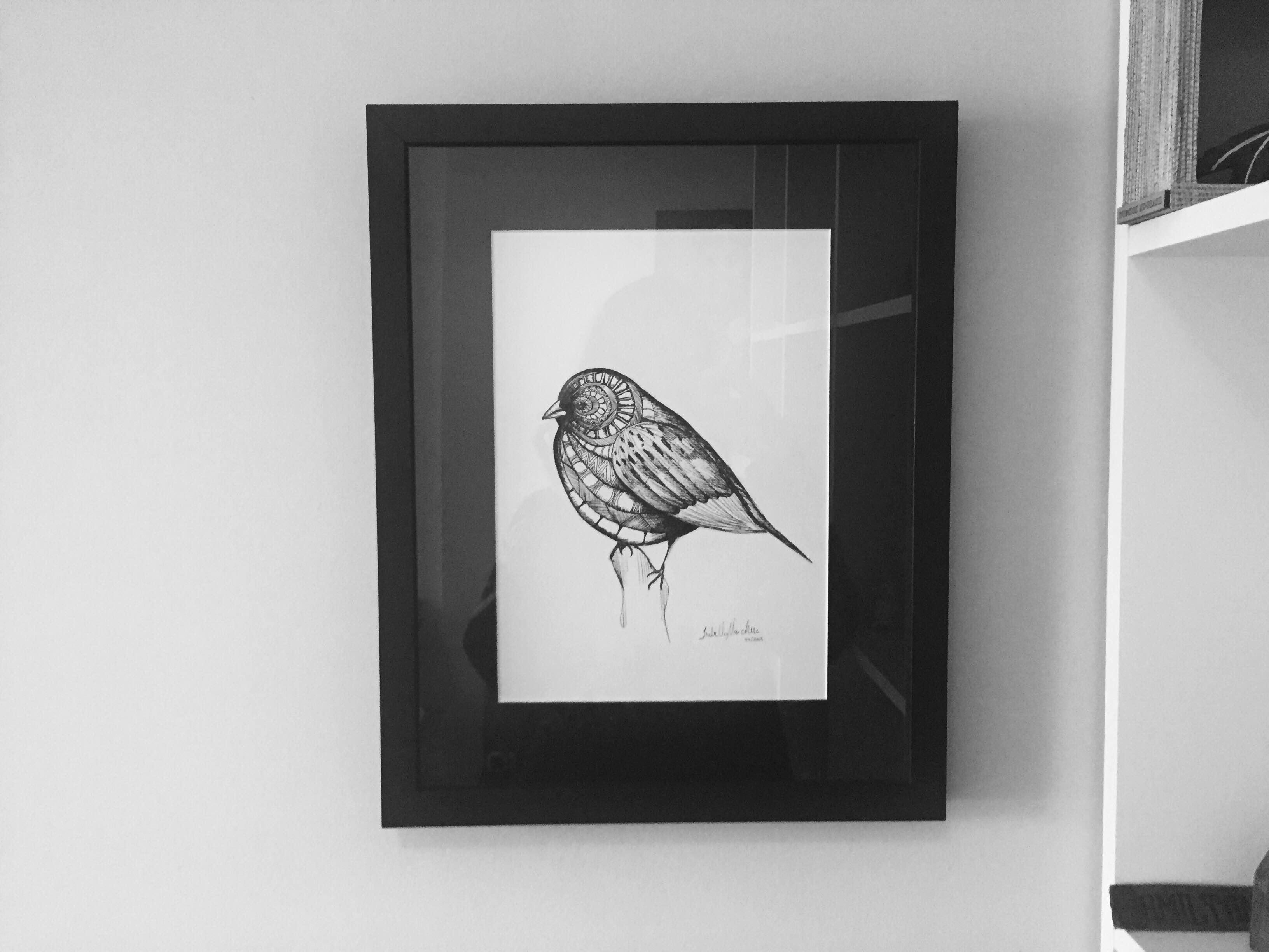 Pássaro 2-A4