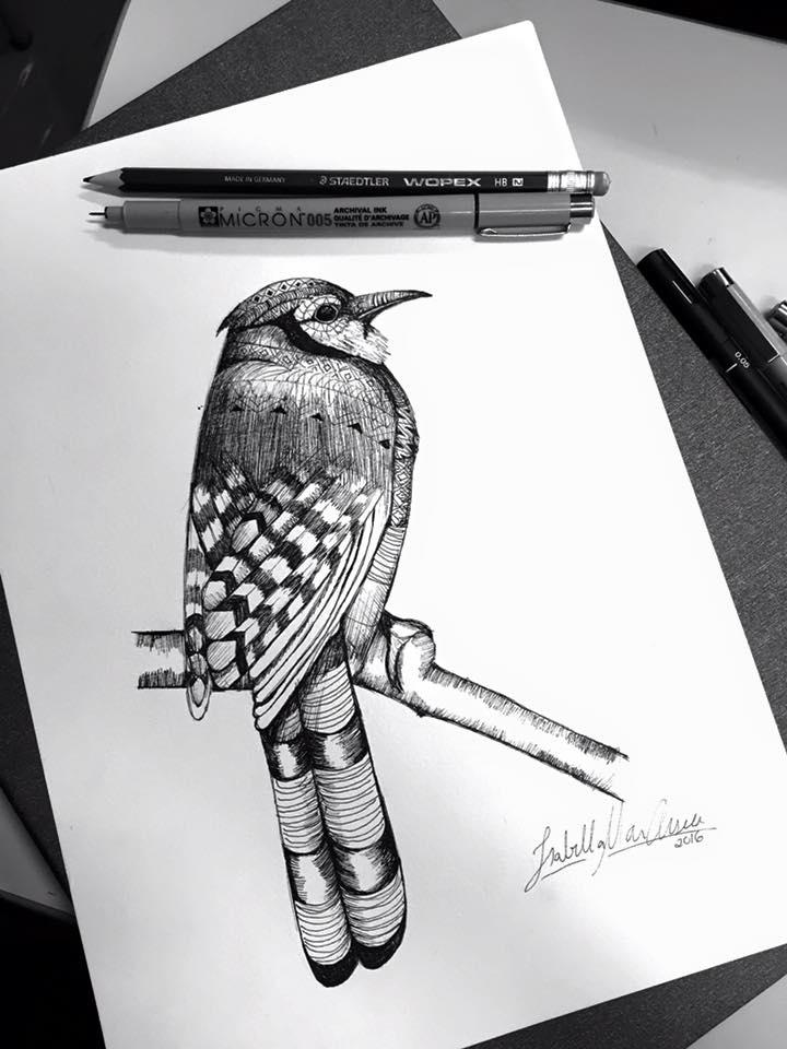 Pássaro 3