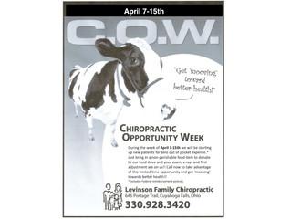 Chiropractic Opportunity Week!