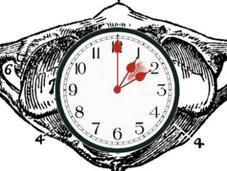 What Do Daylight Saving and Chiropractic Have in Common?