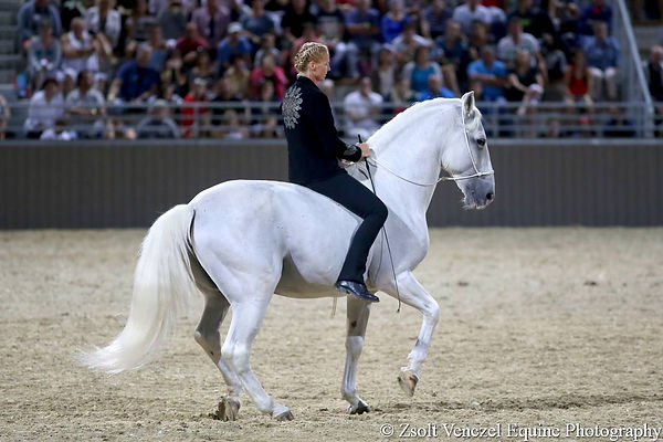 Natasha Jones Classical Dressage Edit Kappel