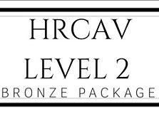 level 2 Bronze_edited.jpg