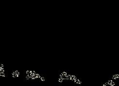 rocket dog logo 2.png
