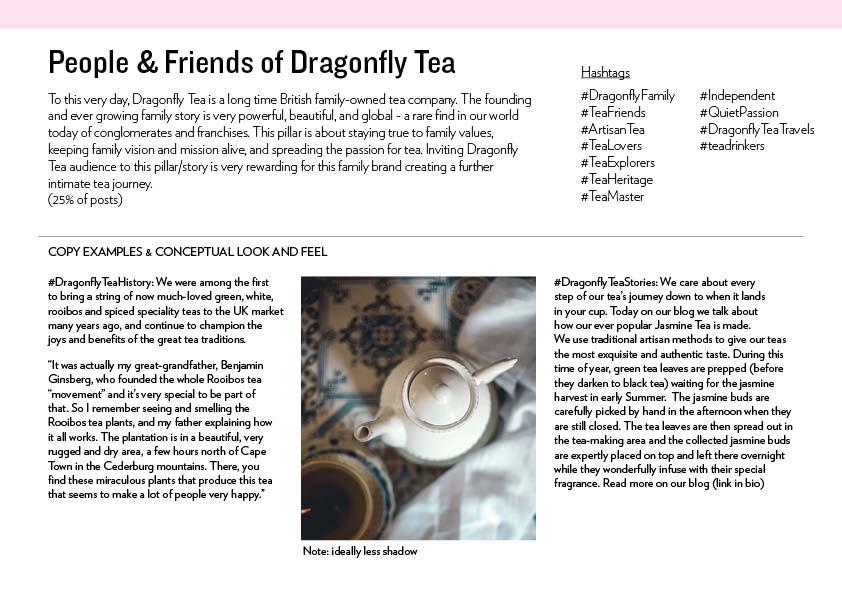 DragonflyTea_strategy4