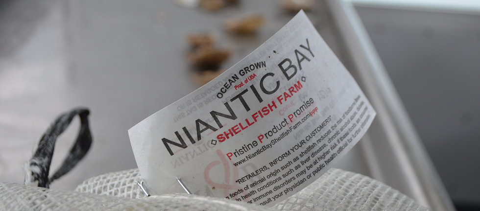 Niantic Bay Shellfish Farm Shellfish Tag on bag of oysters