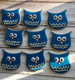 Owls decorated cookies