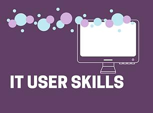 IT skills-3.png