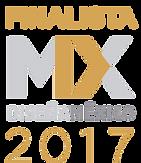 Finalista Diseña México 2017 EVISA Balneario Aragon