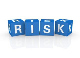 Digital Business Project Risks