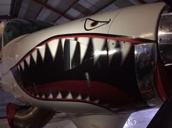 Supervan Shark teeth