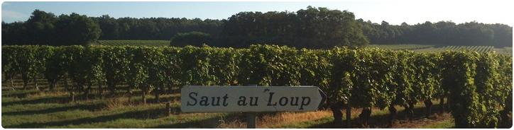 Domaine Dozon Vineyards