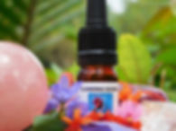 Flowering Source   India   Alive Alchemy