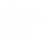 Icon bicycle-road-Cyclist-WHT 500px.png