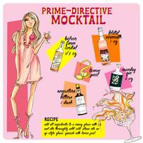Prime Directive.jpg
