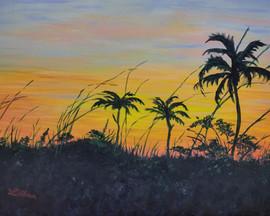 Breezy Sunset