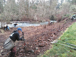 South-Santiam-Watershed-Council-web.jpg