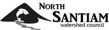 NS-logo_transparent-300x84.png