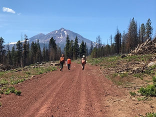 Deschutes-National-Forest.jpg