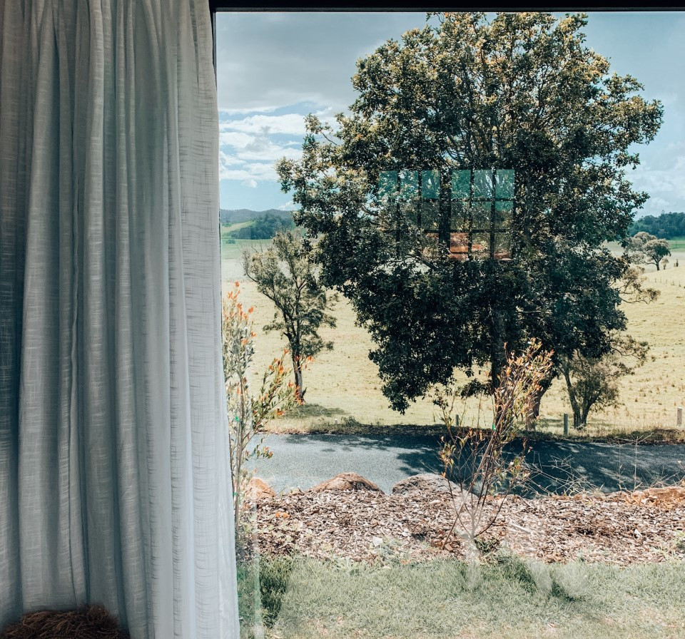 window with a view_3990.jpg