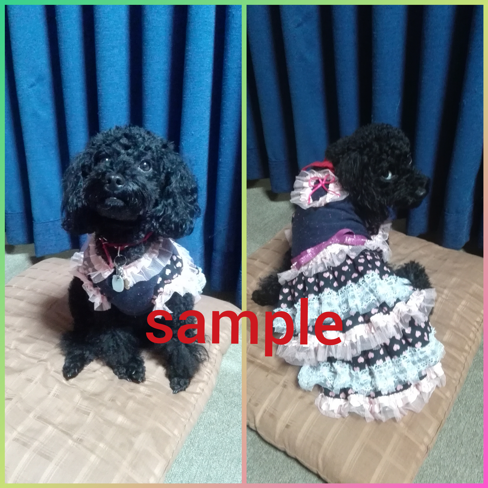 犬服ドレス