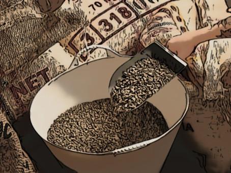 Como procesamos nuestro café.