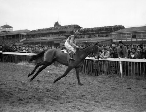 Prince Regent on his way to post; until the 1970s, the start of the Gold Cup was behind the current grandstands