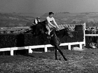 Arkle, racing's benchmark of excellence