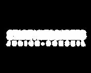 logo descartes conseil FINAL3.png