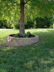 Hardscape Tree Ring.jpg