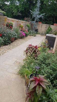 Small Backyard.jpg