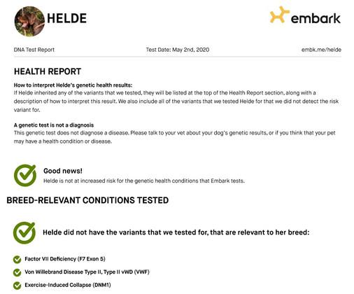 Heldehealth results.jpg