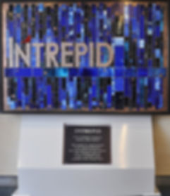 Intrepid is the glass and copper art that was created for the Center for the Intrepid in San Antonio Texas on the army base for the soldiers who have served our country.