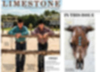 Limestone Magazine Article on Deb Wight and Copper European Mounts