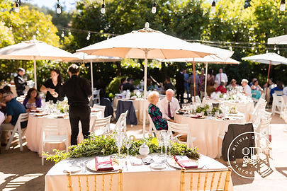 C-A-Wedding-Marin-Art-Garden-Center-293.